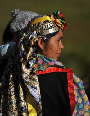 Bringing Awareness to Mapuche Tribe in Chile